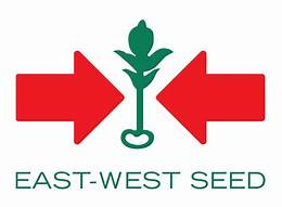 East West Seed (Hai Mui Ten Do) Co., Ltd